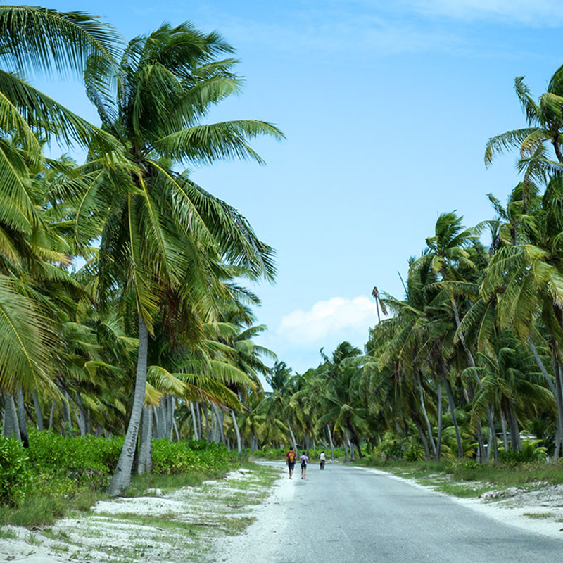 Unwind and Explore at Kiritimati Island